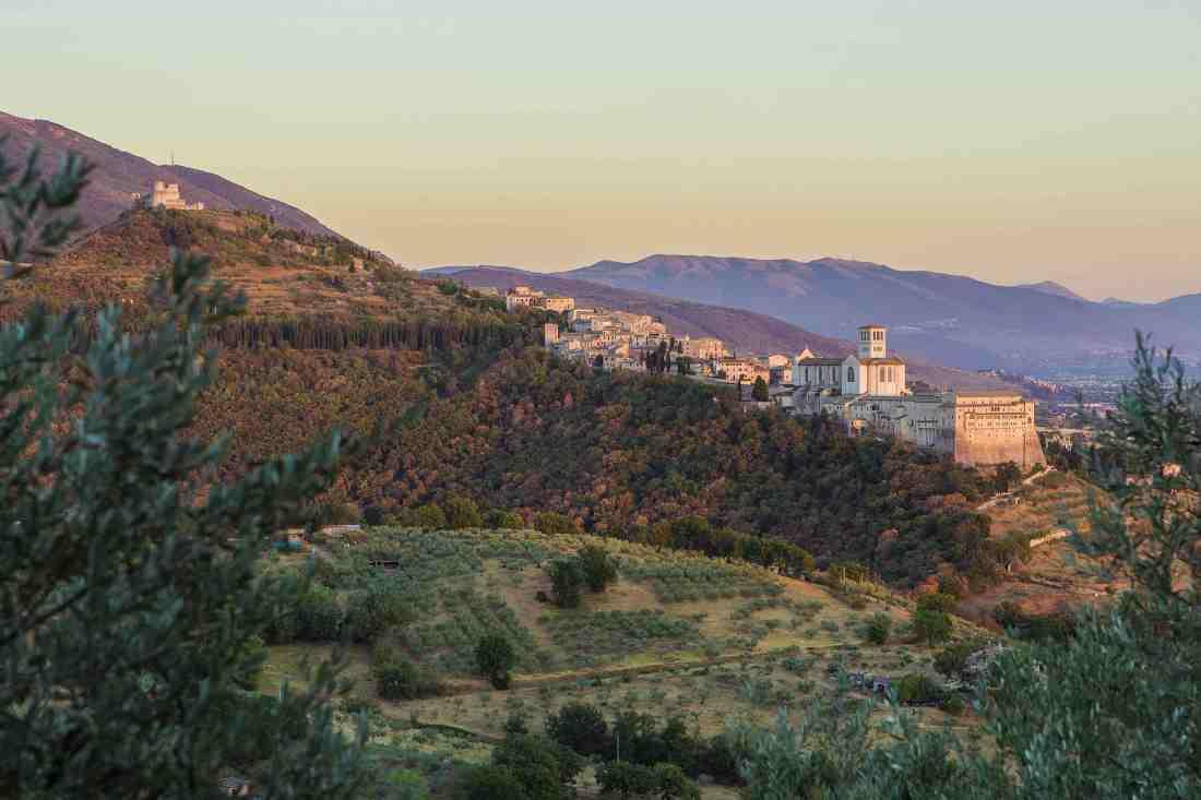 Bosco di San Francesco ad Assisi _BeneFAI